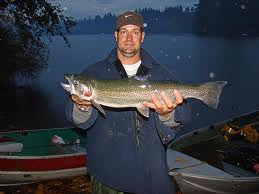 Fuler lake trout imge