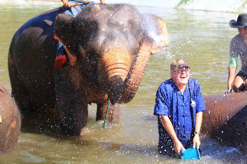 Elephant washes Dennis